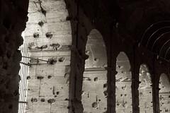 Colosseo, Roma (Francisco Aragão) Tags: coliseu roma italia colosseo rome sepiatone franciscoaragão fotografo monocromatico europa italy romaantiga canonlens24105mm canon5dmkii arcos monumento