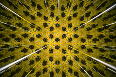 Kaleidoskop - Museum of Illusions - Ljubljana - Slovenija (R.Smrekar-CH) Tags: reflection museum indoor 005000 d750 smrekar 2018 slovenija