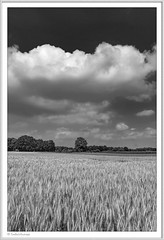 IMGP5228-sw-Rahmen-kl (fredericfromage) Tags: sw bw monochrom landschaft himmel wolken felder münsterland