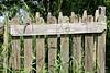DETAIL  HEKJE (Anne-Miek Bibbe) Tags: mengelmoestuin tuin garden jardin giardino jardim natuur nature moestuin vegetablegarden giardinodiverdure jardinpotager gemüsegarten horta tuinhek jardimportão gartentor gardengate portaildejardin puertadejardín