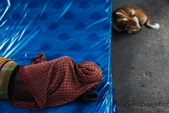 Homebound'2018 (A. adnan) Tags: monochrome travel journey bangladesh chittagong eid 2018 islam muslim festival homebound documentary sony a7riii going home train railway station transportation transport jampacked crowded risky dangerous people portrait