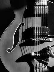 Semi Acoustic (Andy Sut) Tags: electric guitar musicalinstrument bw blackandwhite monochrome semiacoustic ibanezguitar