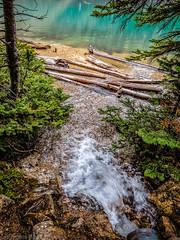4167 Into the Lake_Paule Hjertaas (paule48) Tags: ab alberta banff canada fromabove morainelake creek landscape motionblur stream water logs lake turquoise