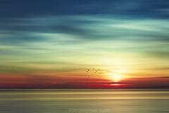 tropical sunset (Dyrk.Wyst) Tags: atmosphã¤re bali indonesia indonesien reiseziel atmosphere calm colours light mood rainbow reflection silhouettes sunset travel traveldestination texture motionblur peaceful photoillustration photomanipulation creativephotography colourful agentur