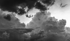 clouds... (st.weber71) Tags: deutschland d800 nikon nrw niederrhein natur schwarzweis blackandwhite art kunst kontrast wolken wolkenstimmung wolkenbilder wolkenhimmel himmel hünxe storm sturm