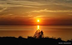 Evening Glow (mswan777) Tags: wave water reflection 1855mm nikkor d5100 nikon scenic nature outdoor yellow orange silhouette tree shore coast grass dune lakemichigan horizon evening sky cloud sun warm glow sunset