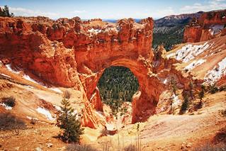 Natural Bridge Bryce Canyon Elevation 8,627