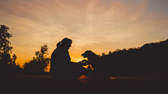 Devotion and friendship (romanhrbek) Tags: dog human sony alpha a6500 sigma 16mm 14 silhouette sun sunset sky colours photography love friendship bond brno hady spring afternoon backlight best friend shadow light atmosphere devotion animal road