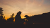 Devotion and friendship (romanhrbek) Tags: dog human sony alpha a6500 sigma 16mm 14 silhouette sun sunset sky colours photography love friendship bond brno hady spring afternoon backlight best friend shadow light atmosphere devotion animal road