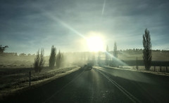 Beginnings (Keith Midson) Tags: highway tasmania sunrise frost cold sun road iphone iphone7plus