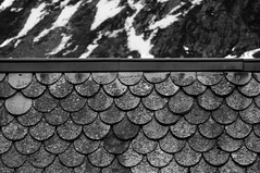 'In Sharp Contrast' (Canadapt) Tags: rooftop mountain snowcap shingles tile bw graphic pattern tromsø norway canadapt
