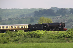 (Capt' Gorgeous) Tags: gwr gloucesterandwarwickshire railway steam gala trains 2018 usa 5197