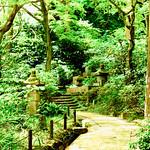 Cemetery Garden of Tokeiji Temple, Kamakura : 北鎌倉・東慶寺 墓苑 thumbnail