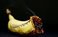 Banana spliff - Banane détournée, cousue et transformée en grosse cigarette interdite... (Charlotte P.Denoel) Tags: conceptualimage fineartphotography fun tobaccco tabac detail closeup grosplan macro contrast contraste smoke fumée nourriture food banane