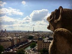 Paris (svp3131) Tags: paris gargouille vue boule tour eiffel notredame cathédrale seine