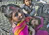 INDIA8859 (Glenn Losack, M.D.) Tags: indiapushkarphotojournalistglennlosackstreetphotographerpeoplescenicshindusanimalsmuslimsbeggingprayermelasfairsfestivalsportraitsleprosysadhusvindravanmathuravaranasikashibanarashomelessphotojournalismdeformedmasjidnewdelhi india portraits children streetphotographer streetphotography photojournalism glennlosack