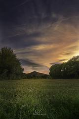 Coucher de soleil en campagne (Q.Sabourin) Tags: var paca 83 côted'azur champs herbe grass green sunset couchersoleil 7d quentinsabourinphotograhies landscape capture countryside clouds cloudy nuages nuageux