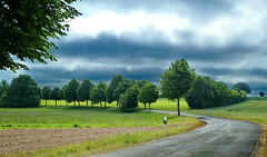 Flotte Kurve in Schleswig-Holstein (antje whv) Tags: schleswigholstein frühling springtime bäume trees wolken clouds strase street kurve