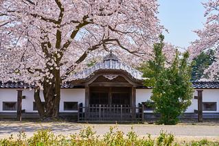 金沢城 / Kanazawa-jo