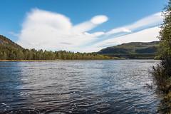 Altaelva Nedre Stengelsen (johansenfoto) Tags: altaelva alta river finnmark norway norge stengelsen nedre salmon arctic nikon d7500 sigma 1835