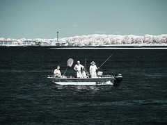 Give a man a fish.... (Al Perrette) Tags: alperrette infrared 720nm panasonic lumix g7