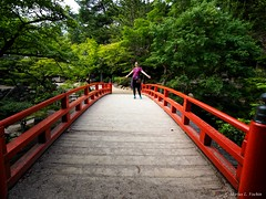 P5302934-Edit.jpg (marius.vochin) Tags: path googlevision plant asia travel nature tree leaf trip bridge walkway miyajima japan labels hatsukaichishi hiroshimaken jp