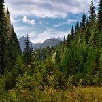In the Direction I Was to Hike... (Yoho National Park) thumbnail