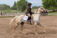 JBC_5322.jpg (Jim Babbage) Tags: krahc horseshow appaloosa horses 2018 bethany