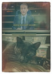 YES, YES INDEED (akahawkeyefan) Tags: cat pussy billmaher davemeyer television