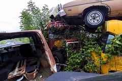 IMG_0621 (joe-stanton) Tags: schmidtssalvageyard salvageyard junkyard rustic cars junk brokencars rust decrepit rural wisconsin