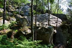 Rocher de la Souris, Sentier des 25 Bosses, Forêt domaniale des Trois Pignons (Christian Giusti) Tags: géographie geography géologie geology géomorphologie geomorphology paysage landscape forêt forest biodiversité biodiversity géodiversité geodiversity patrimoinenaturel naturalheritage patrimoineculturel culturalheritage