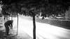 Lato (gorelin) Tags: poland polska warsaw warszawa wilanow sony alpha a7 a7ii fe55f18za 55mm ilce7m2 blackandwhite bw blackwhite black white tree water sun man zeiss spring sunrise street