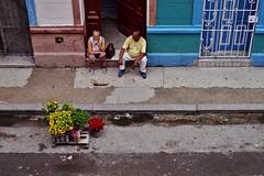 Centro - scène de rue 11 (luco*) Tags: cuba la havane havana habana centro street scene scène de rue marchand fleurs flowers merchant seller homme femme man woman mujer hombre
