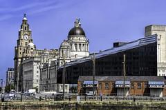 Royal Liver Building (SteveJ442) Tags: architecture building liverpool merseyside city cityscape england uk nikon liverbuilding