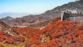 Great Wall Indian Summer
