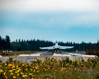EA-18G Touching OLF in Ekatchrome