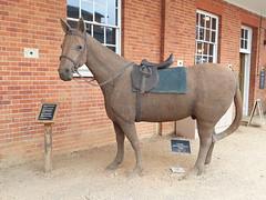 Metal horse by Mandy Flynn at Mottisfont (DorsetBelle) Tags: mandyflynn horses sculpture horsesculpture mottisfont nationaltrust nationaltrustart hampshire