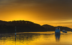Sunrise Waterscape on the Channel (Merrillie) Tags: daybreak woywoy landscape nature australia foreshore newsouthwales mangroves earlymorning nsw brisbanewater rees orange boats morning dawn coastal water sky waterscape sunrise centralcoast bay outdoors