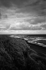 Þorlákshöfn (alex omarsson) Tags: 96 125 2018 35mmfilm ilfordfp4 jupiter8 leicam6 rodinal125 strönd iceland