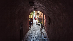 Alley ways of the old town (PhredKH) Tags: canonphotography city cityscene cityview cityscape fredknoxhooke fredkh photosbyphredkh phredkh sailingship splendid stockholm sweden swedish travelphotography traveltostockholm traveltosweden trees boats sky water cobbledstreet oldtown
