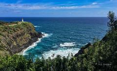 Kilauea Point Lighthouse, Kauai (Rick Derevan) Tags: kauai kilauea kilaueapoint hawaii lighthouse ocean kilaueapointlighthouse pacific pacificocean