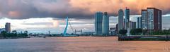 panorama-skyline-rotterdam.jpg