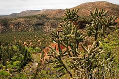 Apache Country (dorameulman) Tags: dorameulman apache reservation sancarlosapachetribe arizona landscape landscapephotography cactus desert mountains americanindians nativeamericans canon7dmark11 canon
