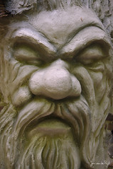 img_0027 (Jan van de Rijt) Tags: efteling canoneos50d 1785mm zevengeitjes face canonefs1785mmf456isusm stonework