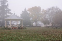 Band rotunda.... (flying-leap) Tags: newzealand northcanterbury nz southisland the4seasons nature weather 4winter winter leaves trees rangiora fog park bandrotunda sony sonydscrx10m4 sonydscrx10iv sonyrx10iv victoriaparkrangiora moody atmosphere foggy
