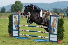 A9907476_s (AndiP66) Tags: springen pfingstspringen pfingsten pfingstmontag ettiswil 2018 21mai2018 mai pferd horse schweiz switzerland kantonluzern cantonlucerne concours wettbewerb horsejumping equestrian sports springreiten pferdespringen pferdesport sport sony alpha sonyalpha 99markii 99ii 99m2 a99ii ilca99m2 slta99ii sony70400mm f456 sony70400mmf456gssmii sal70400g2 amount andreaspeters