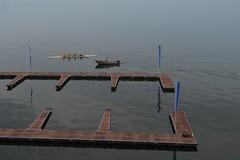 Memorial Day morning on Lake Mendota (humbletree) Tags: madisonwisconsin lakemendota olympus omdem5 rowing