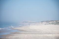 SEA FOG  RUBJERG KNUDE, NORTHERN JUTLAND