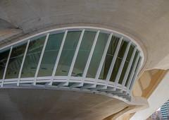 From the bridge (Adaptabilly) Tags: shadow spain window valència santiagocalatrava palaudelasartes building ciudaddelasartesylasciencias architecture concrete cityofartandscience lumixgx7 travel valencia comunidadvalenciana es