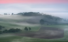 *The magic of the morning mist II* (Albert Wirtz @ Landscape and Nature Photography) Tags: albertwirtz bluehour twilight blauestunde morgennebel morningmist valleyofthemorningmist taldermorgennebel fields acker tree forest rheinlandpfalz rhinelandpalatinate deutschland germany allemagne eifel südeifel moseleifel eifelmosel landscape paesaggi paysages campagne campagna campo rural fog mist nebbia laniebla brume bruma brouillard nikon d810 spring frühling magic themagicofthemorningmist derzaubervonmorgennebel eifelsteig soft softness longexposure langzeitbelichtung albertwirtzlandschaftsundnaturfotografie albertwirtzlandscapeandnaturephotography natura nature naturepoetry